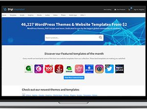 Themeforest Clone Script - Business
